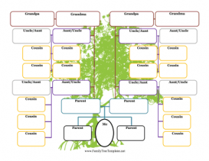 Generation Family Tree With